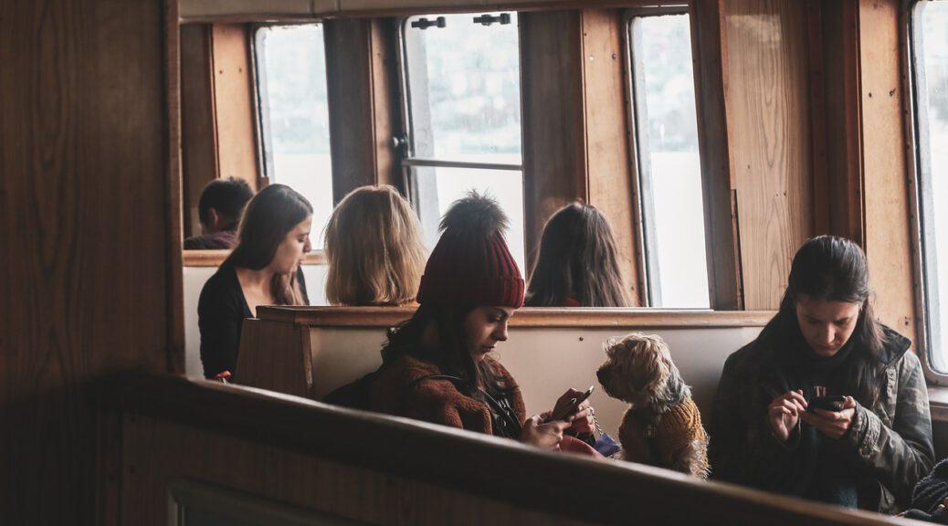 Viaggiare col cane in Pullman