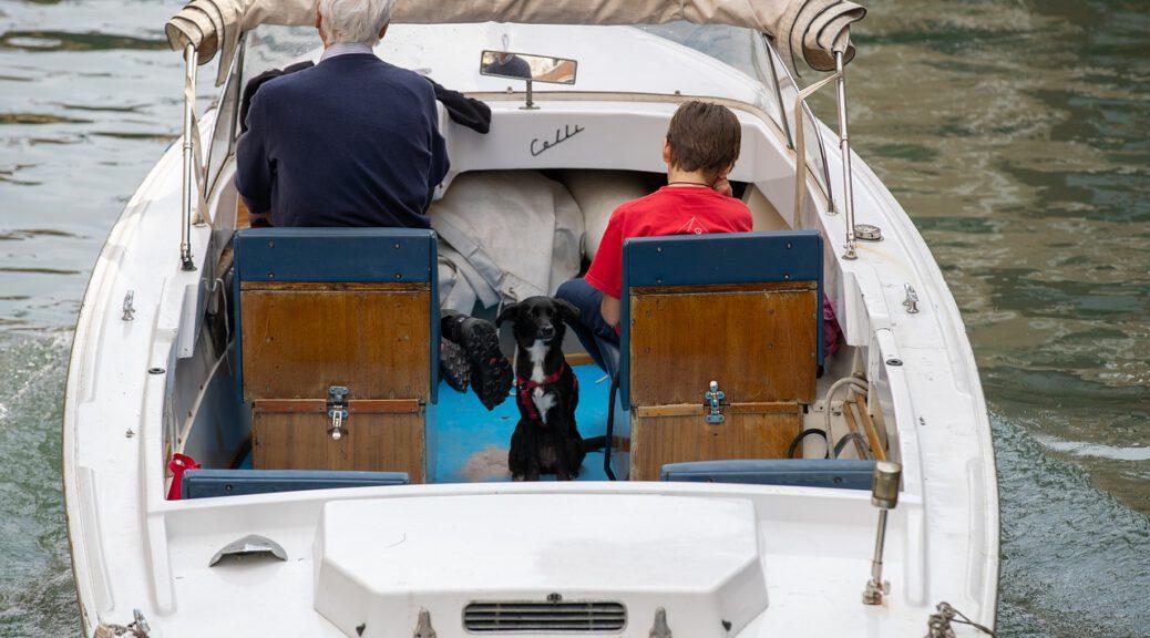 Viaggiare col cane aVenezia