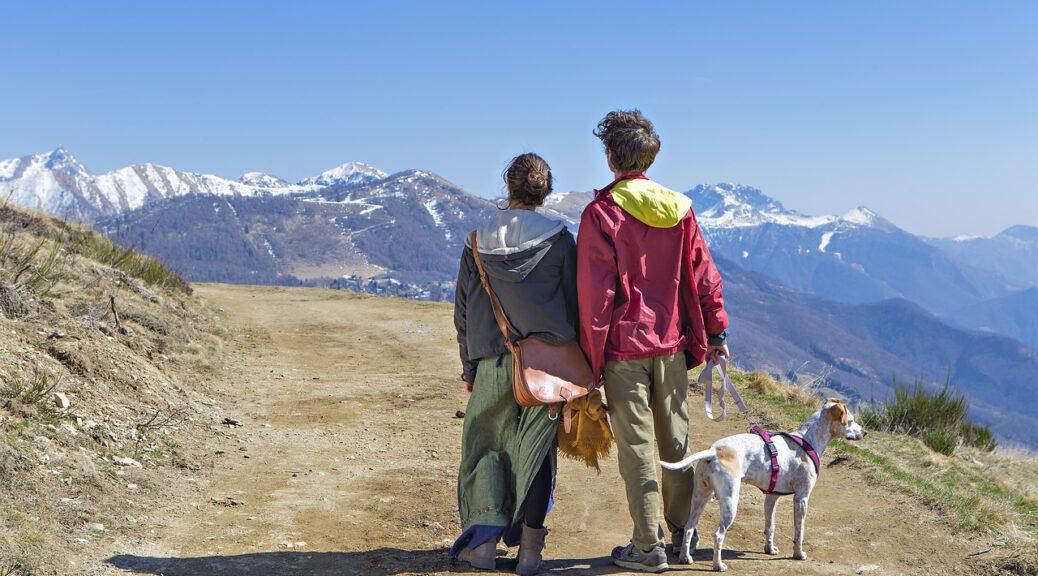 Viaggiare col cane in Trentino